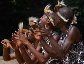 Festiwal Africa Live