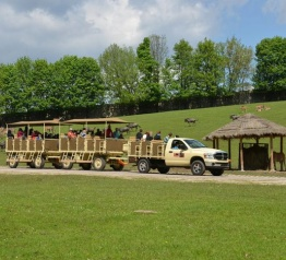 Afrykańskie safari w ZOO Dvůr Králové uzyskało status zabytku kultury