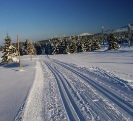 Informacje dla narciarzy biegowych o przygotowanych trasach
